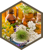 Complimentary Therapies - Dr Natasha Andreadis
